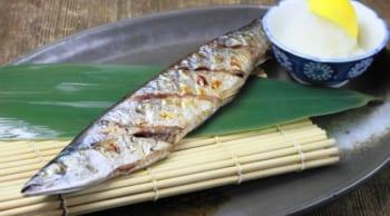 オープニング募集|魚のテーマパークの調理補助|パートOK