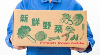 2名募集|野菜・果物の積み込み作業|短期4/1~6/30迄