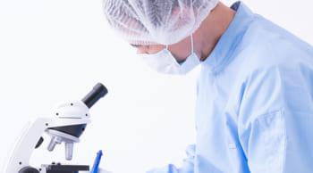 月収25万円以上可|未経験OK|電子部品の顕微鏡検査