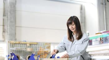 直接雇用有り|プラスチック製品の検査|女性活躍中