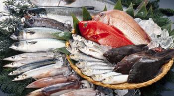 スーパーでの鮮魚スタッフ|フルタイム8~16時|主婦(夫)歓迎
