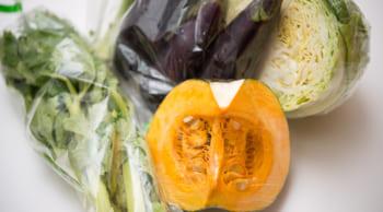 12月までの短期│野菜の袋詰め作業|短時間勤務
