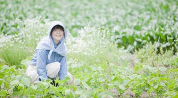 野菜収穫のお仕事|未経験者大歓迎|農業に興味のある方必見