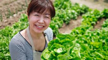 週3~OK 野菜の収穫・出荷業務 日勤のみ WワークOK